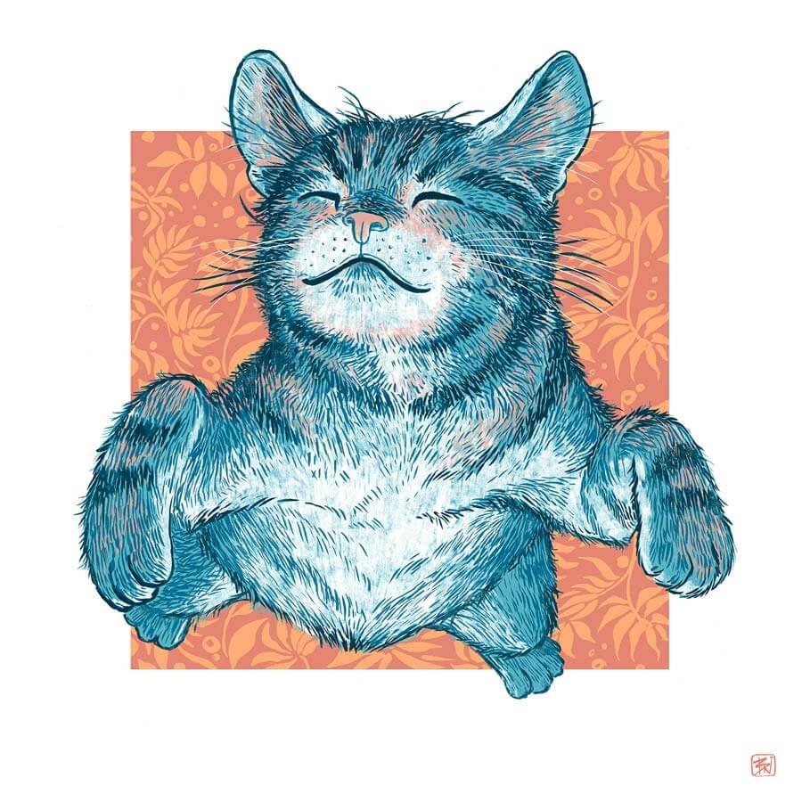 lisbon cat massage